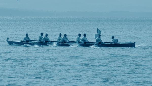 Reale Società Canottieri Querini: canottaggio